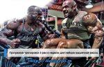 Программа тренировок в тренажерном зале для мужчин на каждый день – Идеальная программа тренировки в тренажерном зале для мужчин — план тотальной трансформации тела