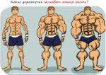 Силовые базовые упражнения для мужчин – Базовый комплекс упражнений для мужчин на массу и силу