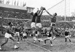 Волейбол мужчины чемпионат мира википедия – .